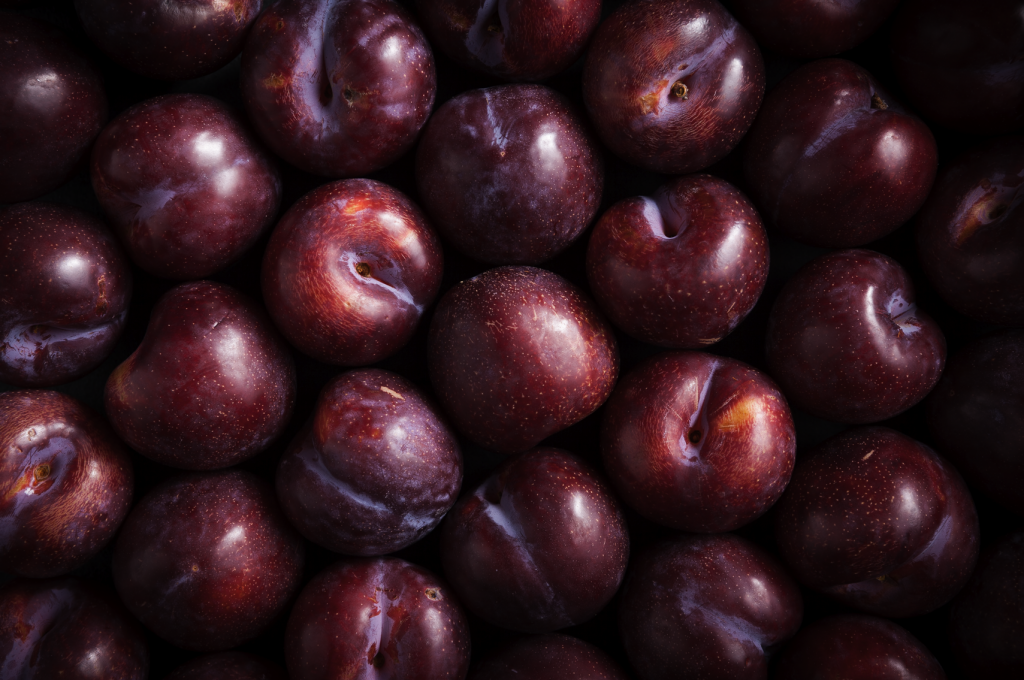 Plums by Stacy Grant