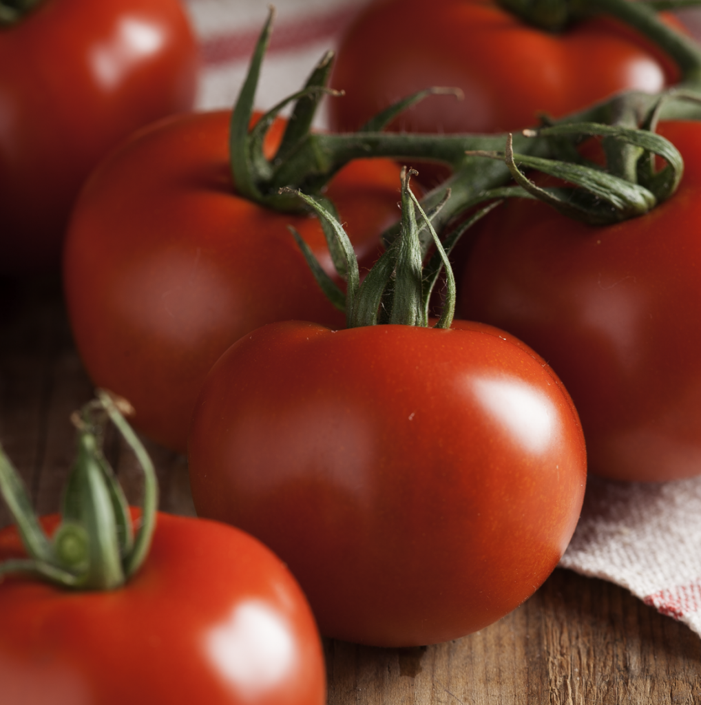 Tomatoes on the vine by Stacy Grant