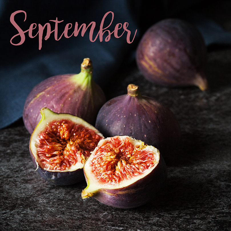 September Figs by Stacy Grant