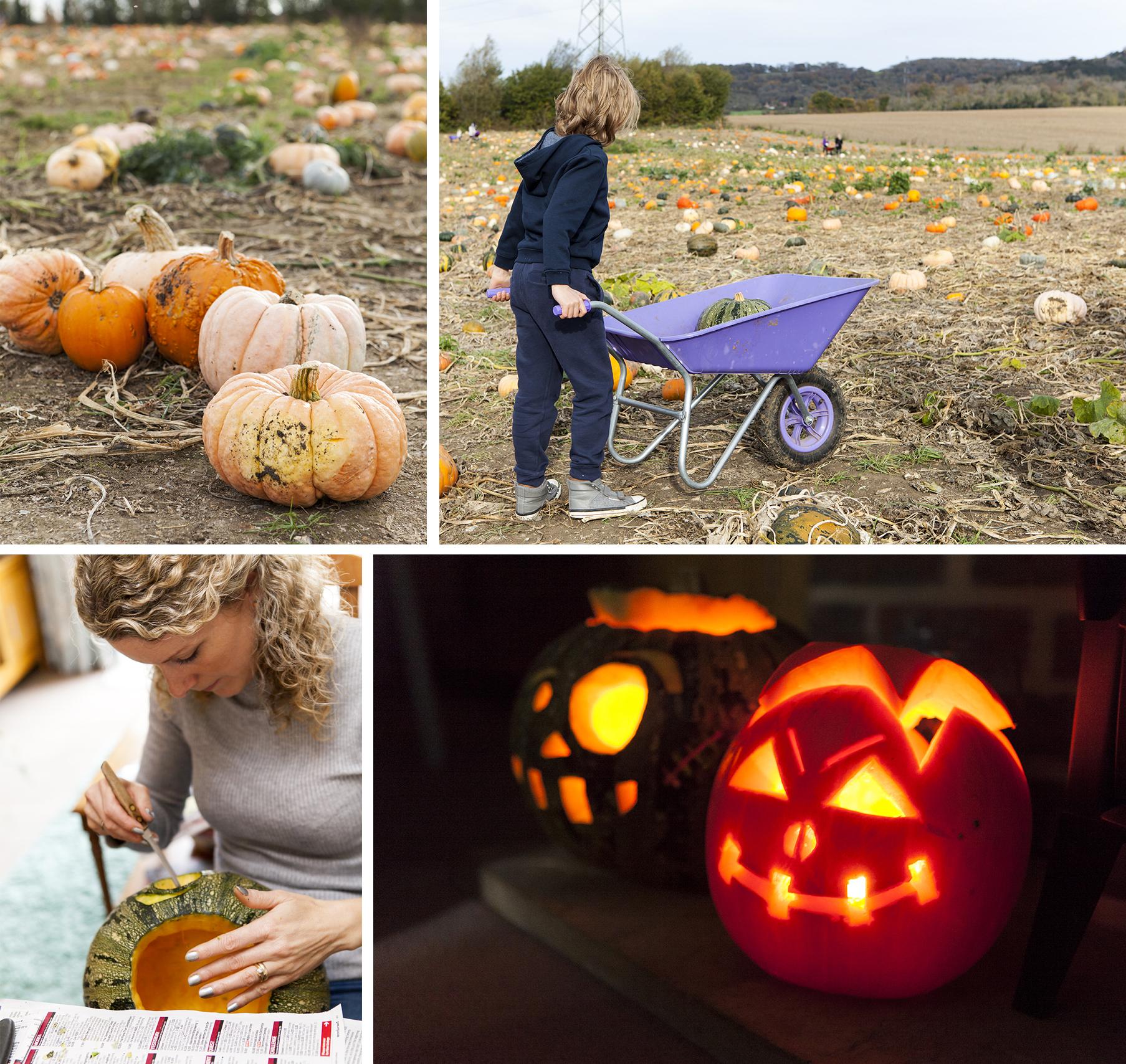 PYO Pumpkins Kent | 52 weekends | Stacy Grant