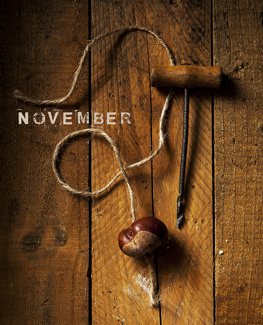 November | Stacy Grant | Photography | conkers