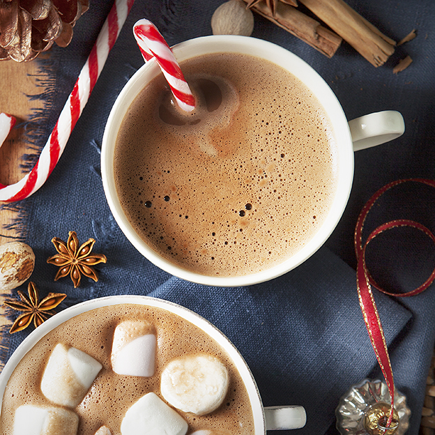 Christmas Hot Chocolate with marshmallows | Stacy Grant | Creative food photography