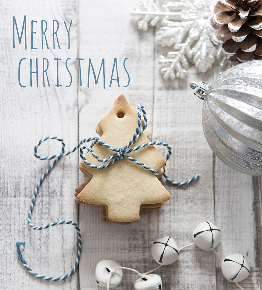 Christmas Tree Biscuits | Stacy Grant | Food Photography
