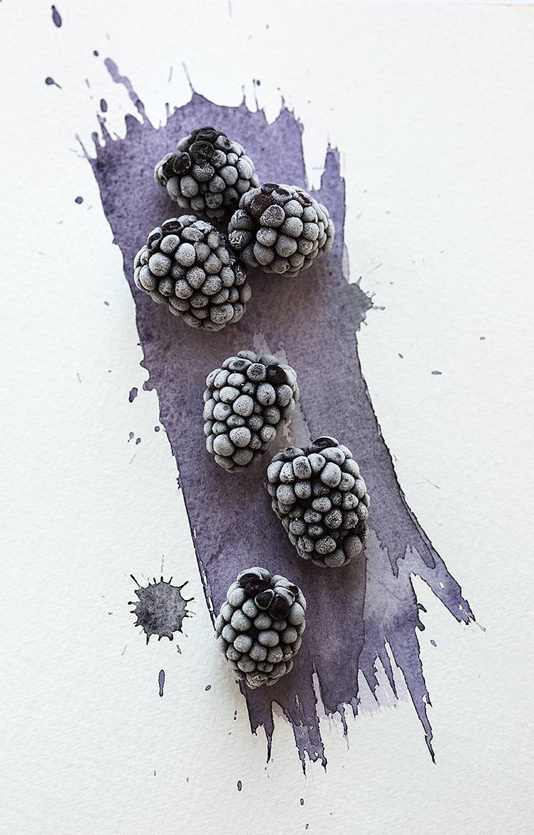 Blackberries on Watercolour by Stacy Grant Creative Photographer