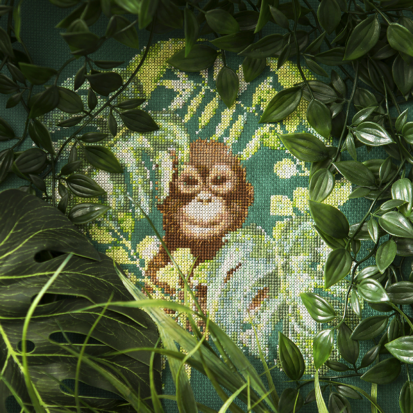 Peacock and Fig | Orangutan | XStitch Mag | Creative Photography by Stacy Grant